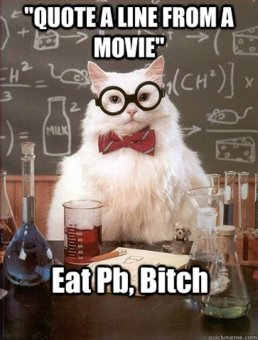 chemistry cat movie